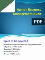 Human Resource Management Audit