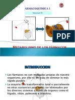 Metabolismo de los Farmacos