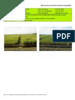 2012WS MET 1-Irrigated - Week 15 (September) Nueva Ecija