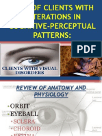 Care of Clients With Alterations in Cognitive-perceptual Patterns