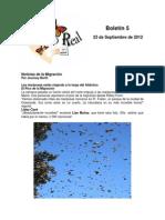 Boletín 5 correo real de las mariposas monarca otoño 2012