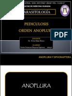 Pediculosis Orden Anoplura
