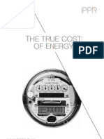 The true cost of energy