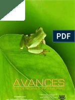 Avances 2010 Volumen 2 - número3