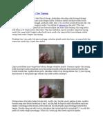 Cara Membuat Boneka Clay Tepung