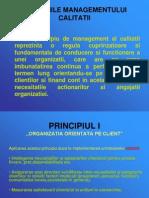principiile_managementului_calitatii