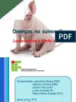 Doenças na suinocultura