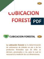 Cubicacion Forestal