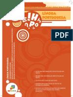 pontuação pdf