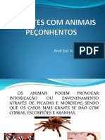 ACIDENTES COM ANIMAIS PEÇONHENTOS....