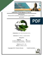 Practica Nº I Extracción de alcaloides y purificación de la quina, boldo e ipecacuana Portada