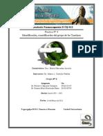 Practica Nº IV Identificación, cuantificación del grupo de las Xantinas