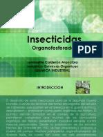 Insect i Cida