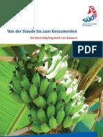 Von Der Staude Bis Zum Konsumenten. Die Wertschöpfungskette von Bananen