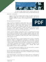 I Diritti Della Donna nell'Islam - Francesca Bocca del Monferrato