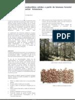 Ficha técnica del proyecto BIOCOMBUSTIBLES (Desarrollo de biocombustibles sólidos a partir de biomasa forestal residual en la Comunitat Valenciana)