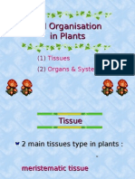 Bio Form4 Cell Organisation in Plants