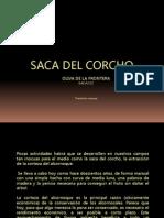 Saca de corcho en Oliva de la Frontera