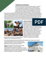 Comercio Interno y Externo en Guatemala