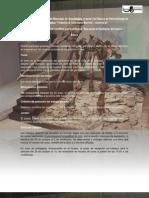 """1 Concurso de Ilustración paleontológica """"Buscando al ilustrador del museo"""""""