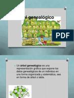 Arbol-genealogicoo