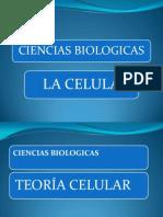 La Celula Generalidades Biol 101