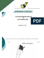 Propuesta Cultivo 1000 Ha Jatropha C. en ARGENTINA (Rev 2)