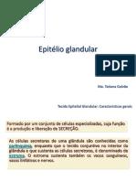 aula_ Epitélio glandular