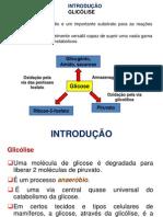 Glicolise Bioquimica Slid