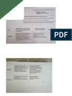 Planificacion Lengua y Sociales.