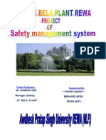 Project Report Safety JAYPEE