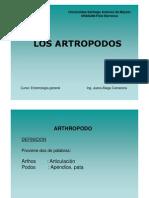 LOS ARTROPODOS [Modo de Compatibilidad]