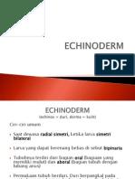 Echinoderm