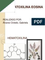 HEMATOXILINA EOSINA