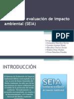 Sistema de evaluación de impacto ambiental (SEIA