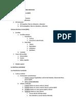 Psicobiologia Divisiones Del Sn