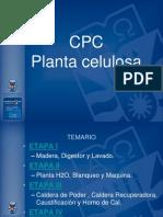 proceso de la celulosa
