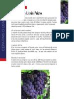 Ficha Cepa País o Listán Prieto - El Mundo del Vino Sept 2012