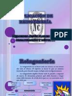 Organizacion y Metodos- Mercedes Flores Loro