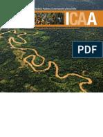 Amazonía Andina