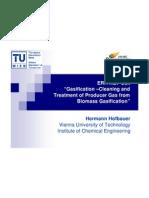 5. Hofbauer, TUWien, ERA-Net-Gascleaning