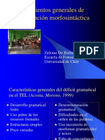 intervención morfosintáctica final 2009