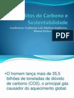 Creditos de Carbono e Sustentabilidade- apresentaçao