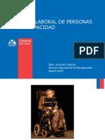 PN Inclusion Laboral PcD