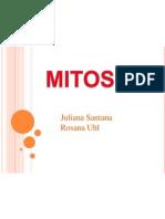 MITOSE-2
