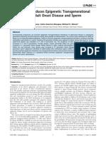 Dioxin (TCDD) Induces Epigenetic Transgenerational Inheritance of Adult Onset Disease and Sperm Epimutations