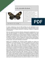 Artículo periódico (1)