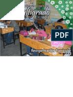PTEM 2012 Reorganización Curricular (Final)