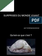 Surprises Du Monde Vivant I