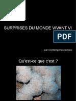 Surprises Du Monde Vivant VI